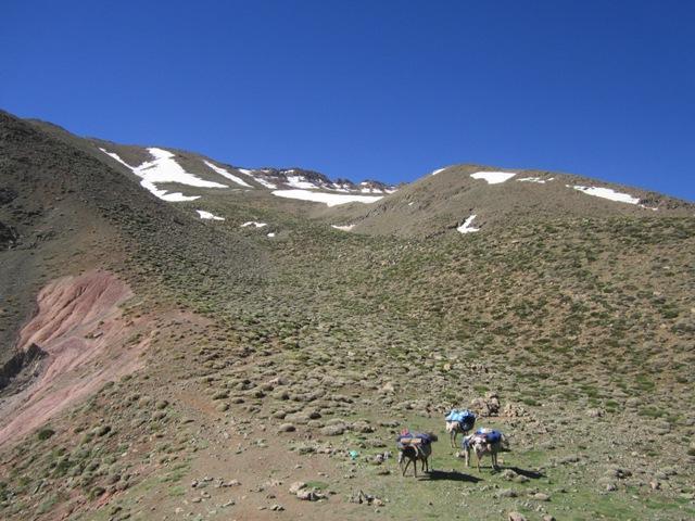 Marocco Mountain Friends