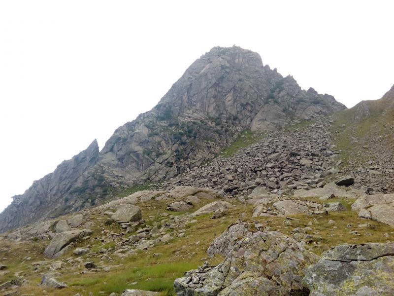 arrampicata pedertic guide alpine mountain friends (4)
