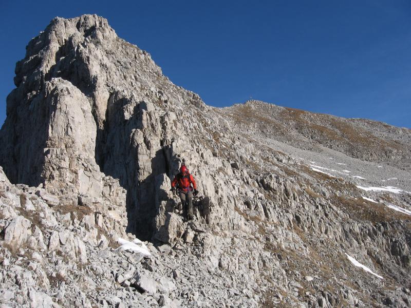 cresta oreste mountain friends guide alpine (3)