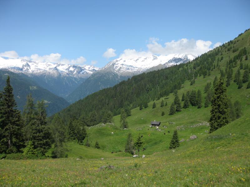 doss sabion guide alpine pinzolo madonna di campiglio