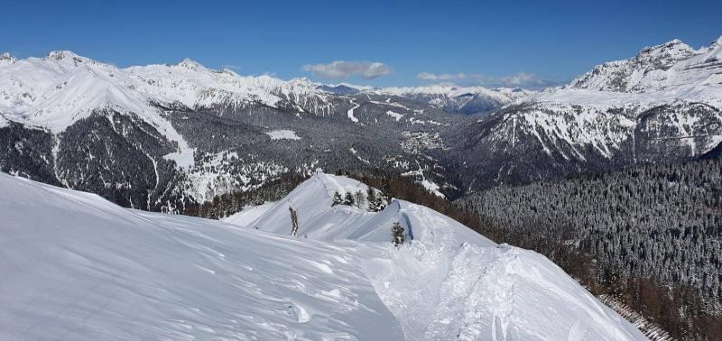 freeride skiarea campiglio (4)
