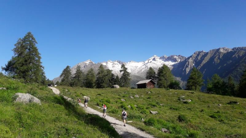 grande trek adamello brenta guide alpine accompagnatorimountain friends (1)