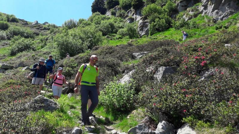 grande trek adamello brenta guide alpine accompagnatorimountain friends (2)