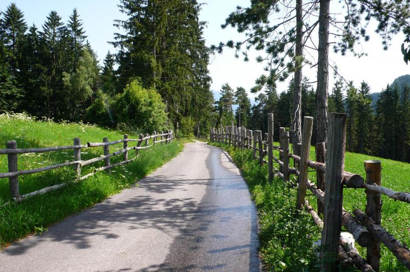 hofer weg trekking guide accompagnatori media montagna pinzolo (2)