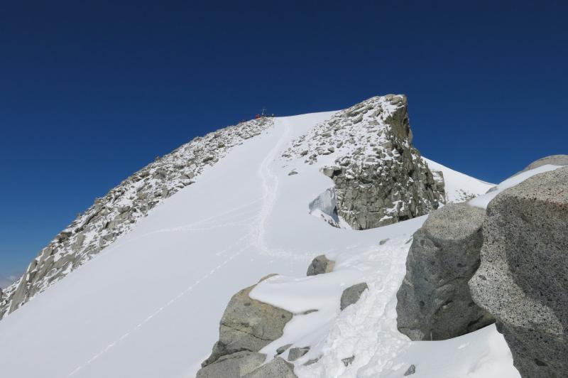 la cima Presanella