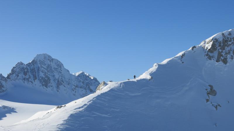 sci alpinismo adamello (4)