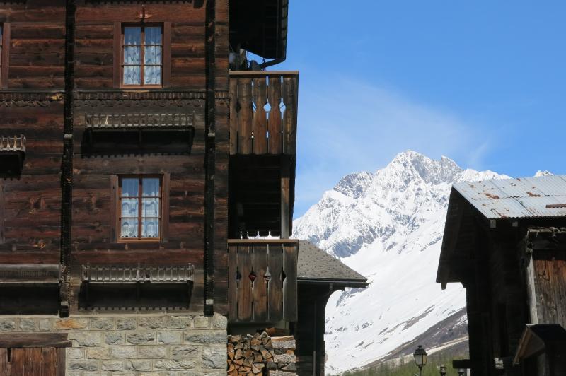 sci alpinismo oberland bernese (8)
