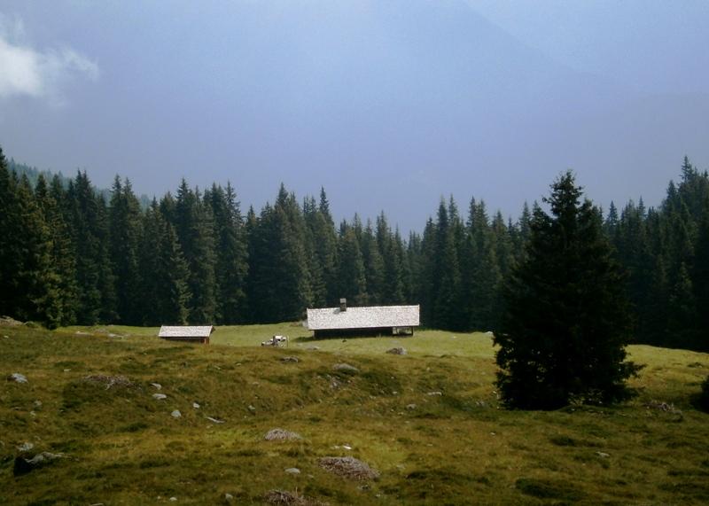 Scopri tutti i segreti della montagna con gli accompagnatori Mountain friends