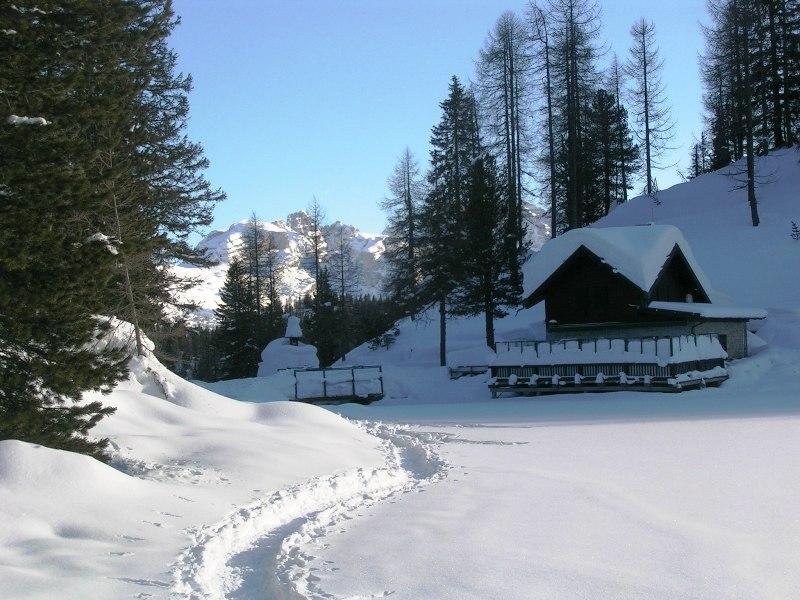 Hotel VacanzaViva, gli hotel per la la tua vacanza attiva e sportiva in Trentino